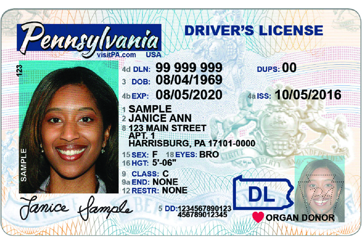 florida commercial drivers license search