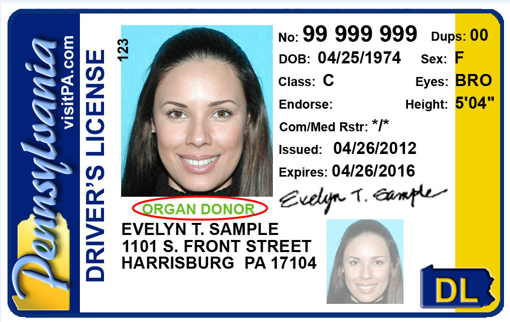 Sample Drivers License with Organ Donor Designation