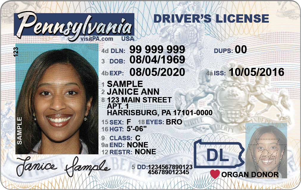 Drivers center license pa photo