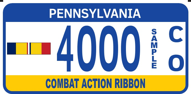 Combat Action Ribbon plate