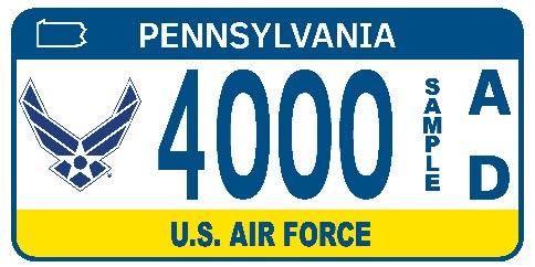 U.S. Air Force plate